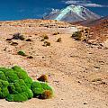 Altiplano Landscape by Dirk Ercken