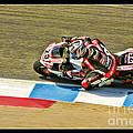 Ama Superbike David Anthony by Blake Richards