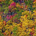 Amazing Cloudland In The Fall by John M Bailey