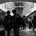 Amazing Penn Station - Otherworldly View by Miriam Danar