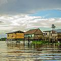 Amazon Beach House by Ramona Murdock