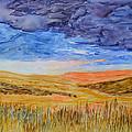 Amber Waves Of Grain by Phyllis Brady