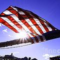 America by Joe Geraci