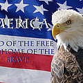 America Land Of The Free by Alan Hutchins