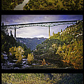 American River Triptych by Sherri Meyer