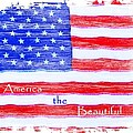 America The Beautiful by Robert ONeil