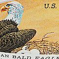 American Bald Eagle Vintage Postage Stamp Print by Andy Prendy