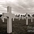 American Cemetery In Normandy  by Olivier Le Queinec