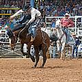 American Cowboy Riding Bucking Rodeo Bronc II by Sally Rockefeller