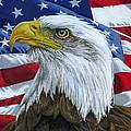 American Eagle by Sarah Batalka
