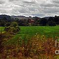 American Farmland by Lydia Holly