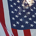 American Flag - 01131 by DC Photographer