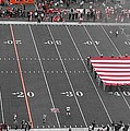 American Flag At Paul Brown Stadium by Dan Sproul