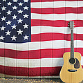 American Flag Guitar by Terry DeLuco