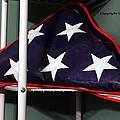 American Flag by Karl Rose