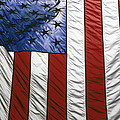 American Flag by Tony Cordoza