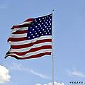 American Flag by Verana Stark