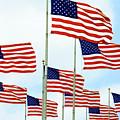 American Flags by Regina Geoghan
