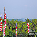 American Flags With Kennesaw Mountain In Background by Renee Trenholm