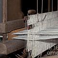 American Loom 1 Of 3 by Terri Winkler