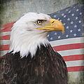 American Pride by Angie Vogel