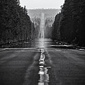 American Road Trip by Alexis Birkill