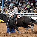 American Rodeo Female Barrel Racer Dark Horse I by Sally Rockefeller
