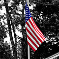 American Spirit by Jai Johnson