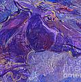 Amethyst by Linda L Martin