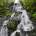 Amicalola Falls by Debra and Dave Vanderlaan