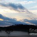 Amidst Foggy Misty Mountain by Ron  Tackett