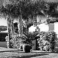 Amir Drive Bw Marrakesh Palm Springs by William Dey