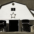 Amish Barn And Buggies by Dan Sproul