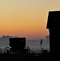Amish Buggy Before Dawn by David Arment