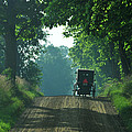 Amish  Buggy Gravel Road by David Arment