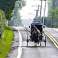 Amish Buggy In Lancaster County Pa. by Bill Cannon