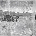 Amish Buggy In Old Book by David Arment