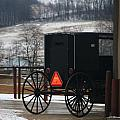 Amish Buggy In Winter by Dan Sproul