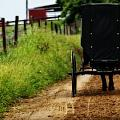 Amish Buggy On Dirt Road by Dan Sproul