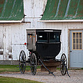 Amish Buggy White Barn by David Arment