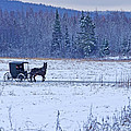 Amish Carriage by Jack Zievis