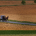 Amish Country Lancaster Pennsylvania by Susan Candelario