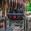 Amish Family On Covered Bridge by Gene Sherrill