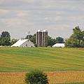 Amish Farm 2 by Mary Carol Story