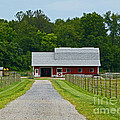 Amish Farm by Ann Horn