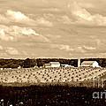 Amish Farm by Lila Fisher-Wenzel