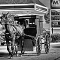 Amish Gas by Dan Sproul