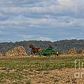 Amish Man Boy Buggy by David Arment