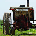 Amish Tractor by Cindy Manero