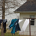 Amish Washday - Allen County Indiana by Suzanne Gaff